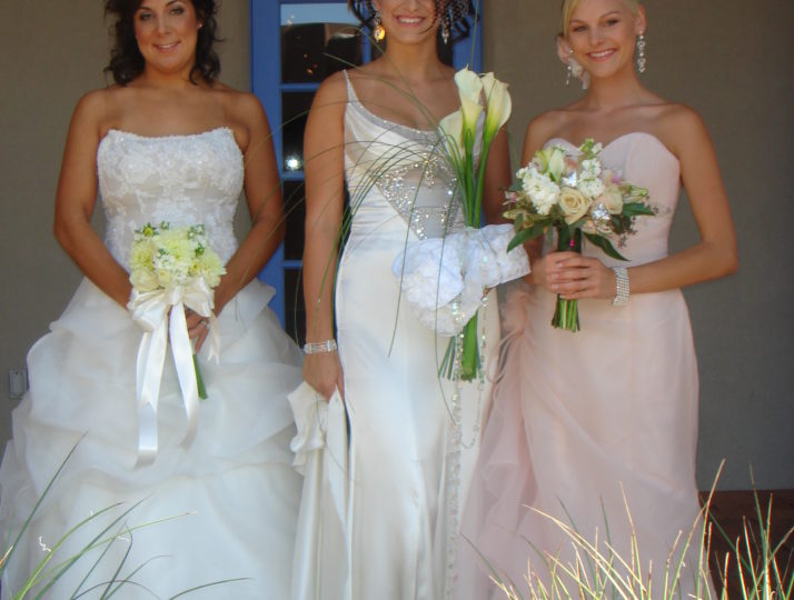 Wedding and Brides